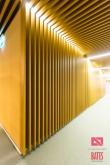 lamelar ceiling design