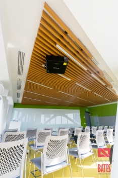 lamelar ceiling